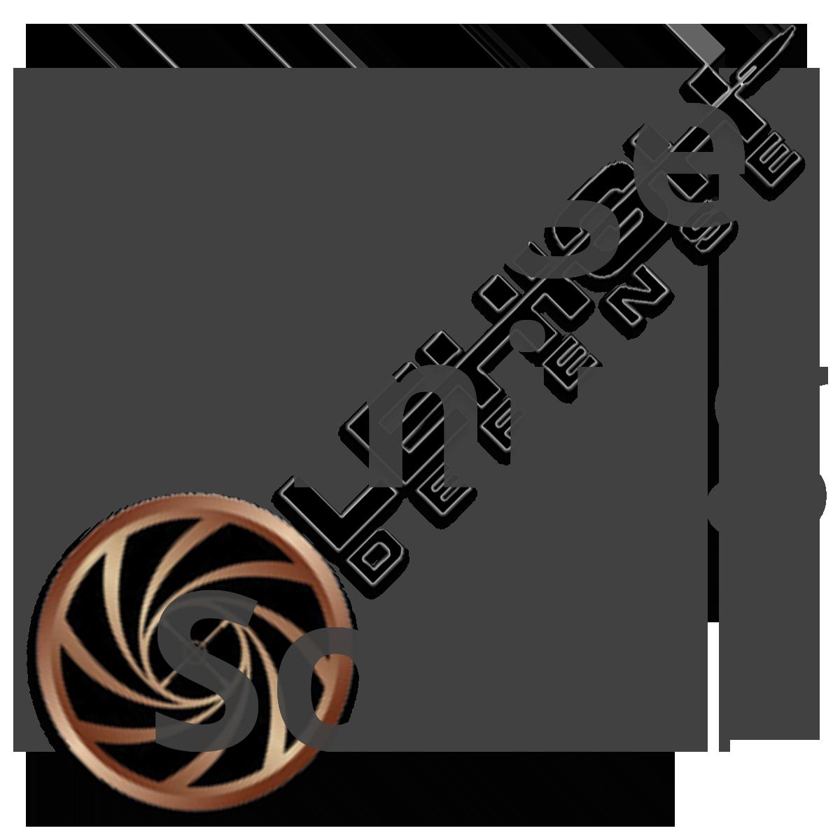 Maximum-Expansion-Bullets